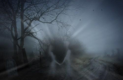 die-elfte-rauhnacht-nebel